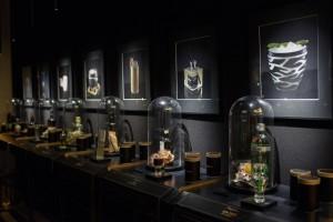 s_fragrances-bar_c-the-ritz-carlton-berlin-photographer-natalia-kepesz-4